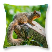 Exploring Throw Pillow by Optical Playground By MP Ray