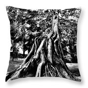 Exposed Throw Pillow by Benjamin Yeager