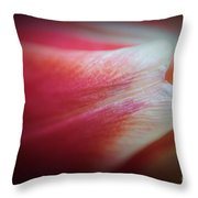 Exposed Throw Pillow by Luke Moore
