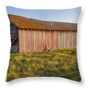 Faded With Time Throw Pillow by Fran Riley