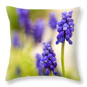Fading Throw Pillow by Caitlyn  Grasso