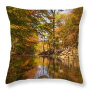 Fall at Valley Creek  Throw Pillow by Rima Biswas