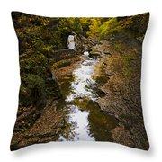 Fall colors Throw Pillow by Eduard Moldoveanu