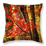 Fall Forest Detail Throw Pillow by Elena Elisseeva