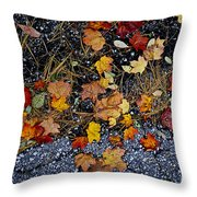 Fall Leaves On Pavement Throw Pillow by Elena Elisseeva