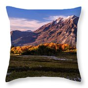 Fall Meadow Throw Pillow by Chad Dutson