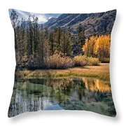 Fall Reflections Throw Pillow by Cat Connor