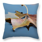 Fall Reflections Throw Pillow by Jane Ford