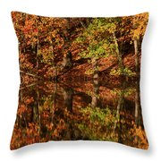 Fall Reflections Throw Pillow by Karol  Livote
