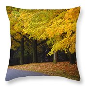 Fall Road And Trees Throw Pillow by Elena Elisseeva