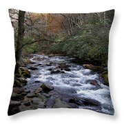Fall Seclusion Throw Pillow by Skip Willits
