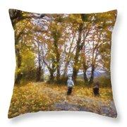 Fall Stroll Throw Pillow by Barry Jones
