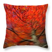 Fall Tree Carousel Throw Pillow by Juergen Roth