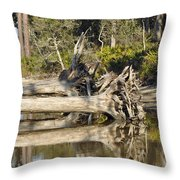 Fallen Trees Reflected in a Beach Tidal Pool Throw Pillow by Bruce Gourley
