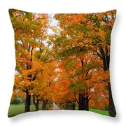 Falling For Country Farm Throw Pillow by Lingfai Leung