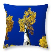 Falling Leaf Throw Pillow by Chad Dutson