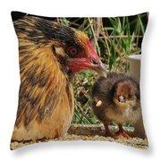 Family Throw Pillow by Karin Pinkham