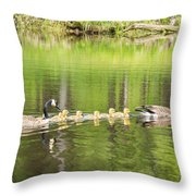 Family Outing Throw Pillow by Bill Pevlor