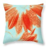 Fancy Schmancy Gerberas Throw Pillow by Bonnie Bruno