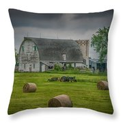 Farm Scene Throw Pillow by Paul Freidlund