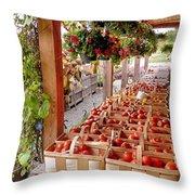 Farmstand Throw Pillow by Janice Drew