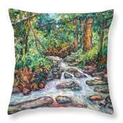 Fast Water Wildwood Park Throw Pillow by Kendall Kessler