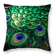 Feather Abstract Throw Pillow by Karen Wiles