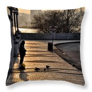Feeding The Birds At Dawn Throw Pillow by Bill Cannon