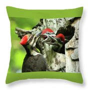 Female Pileated Woodpecker At Nest Throw Pillow by Mircea Costina Photography