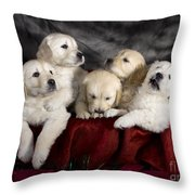 Festive Puppies Throw Pillow by Angel  Tarantella