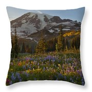 Field Of Dreams Throw Pillow by Mike Reid