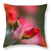 Fiery Roses Throw Pillow by Mike Reid