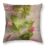 Find The Seed Throw Pillow by Cheryl Young