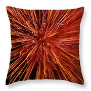 Fire In The Sky Throw Pillow by Carolyn Marshall