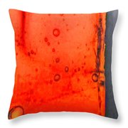 Fire Within Throw Pillow by Marlene Watson