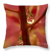 Fireweed Throw Pillow by Crystal Magee