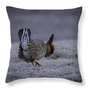 First Light 3 Throw Pillow by Thomas Young