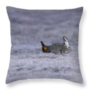 First Light Throw Pillow by Thomas Young