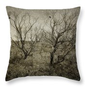 First Snow Throw Pillow by Amy Weiss