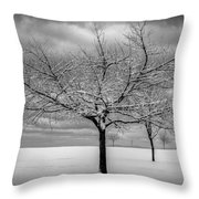 First Snow Throw Pillow by Randy Hall