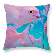 Fish Frenzy Throw Pillow by Carey Chen