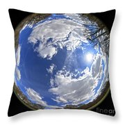 Fisheye Park Throw Pillow by Jane Rix