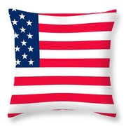 Flag Of The United States Of America Throw Pillow by Anonymous