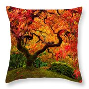 Flaming Maple Throw Pillow by Darren  White