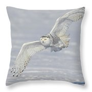 Flight Of The Snowy Throw Pillow by Daniel Behm