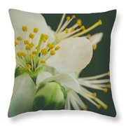 Floating In The Dark Throw Pillow by Marco Oliveira