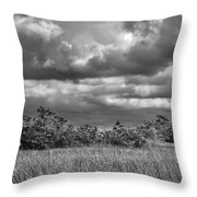 Florida Everglades 0184bw Throw Pillow by Rudy Umans