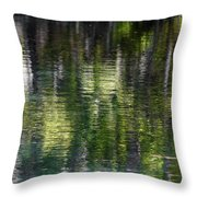 Florida Silver Springs River Throw Pillow by Christine Till