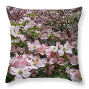Flourishing Pink Magnolias Throw Pillow by Deborah  Montana