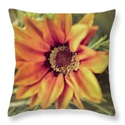 Flower Beauty I Throw Pillow by Marco Oliveira